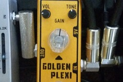 Renting out: Tone City Golden Plexi