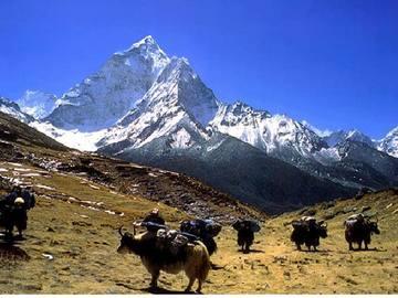 Réserver (avec paiement en ligne): Camp de base de l'Everest - Népal