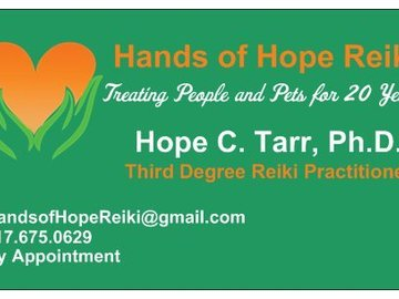Services: In-Home Reiki Treatments