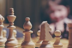 Services (Per event pricing): Chess Lessons and Play
