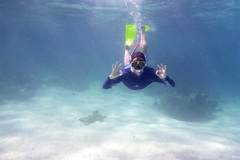 Daily Rate: Snorkel / Mask/ Fins