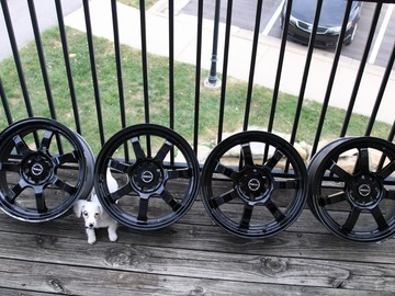 Selling: Ray's Gram Lights 17x7.5/8.5