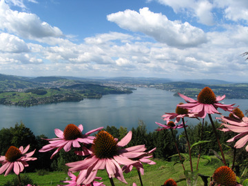Offering with online payment: Luzern city tour and Bürgenstock by boat and funicular railway