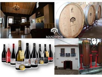 Offering with online payment: WINE TASTING TOUR AT MANZWINE