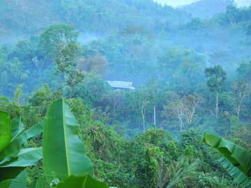 Réserver (avec paiement en ligne): Trek en immersion chez les Karen - nature et culture -  Thaïlande