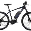 Daily Rate: VelectriX Ascent+ 29 - eMTB - Large