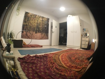 Annetaan vuokralle: Subrent Cosy Room in shared apartment (dec-jan, extend to july)