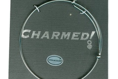 Liquidation/Wholesale Lot: 30 Charmed  Bracelet w/Sterling Silver Charm $4.25 ea PRICE CUT