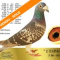 Vente avec paiement en ligne: FILLE DE L'ESPAGNOL