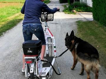 Fahrzeug-Verleih: Lopifit e-walking