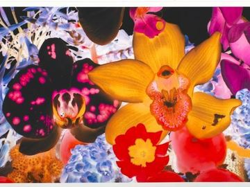 Custom Campaign: Marc Quinn - Art and Design -  91.7K reach, .54% ER