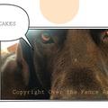 Selling: Great Dane Demands Pancakes! Photo Greeting Card
