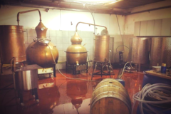 Buy Experiences: Golani Whisky Tasting & Distillery Tour