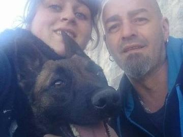 Offre: Garde d'animaux, Visite à votre domicile & Promenade