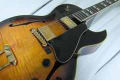 Renting out: Gibson ES-175 1998