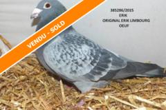 Vente avec paiement en ligne: ORIGINAL ERIK LIMBOURG