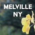 Monthly Rentals (Owner approval required): Melville NY,  Safe, Secured Parking space for rent
