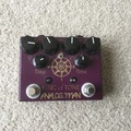 Renting out: Analogman King of Tone