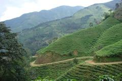 Réserver (avec paiement en ligne): Trek entre Montagne et Mer - Costa Rica