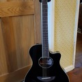 Renting out: Yamaha APX600