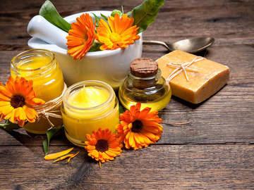 Workshop Angebot (Termine): Aromatherapie Basic - Seminar