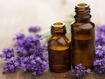 Workshop Angebot (Termine): Aromatherapie - Raindrop Energetik