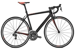Weekly Rate: Focus  Cayo Ultegra Di2 - Medium - DELIVERY & PICK-UP INCLUDED
