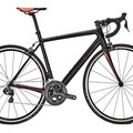 Daily Rate: Focus  Cayo Ultegra Di2 - Medium - DELIVERY & PICK-UP INCLUDED