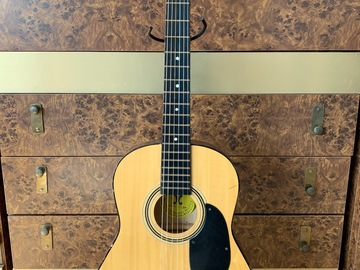 Renting out: Small Harmonia Acoustic