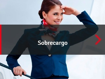 Suppliers: Aerotrain Mexico - Sobrecargo