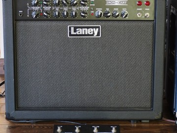 Renting out: Laney IRT30-112