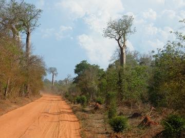 Réserver (avec paiement en ligne): Grande traversée à vélo - Madagascar