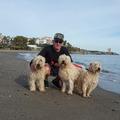 Verified Pet Sitter: Mature Dependable Couple - Experienced
