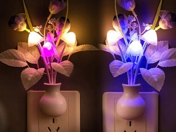 Buy Now: 20 pc. Unique Flowered Nite Light