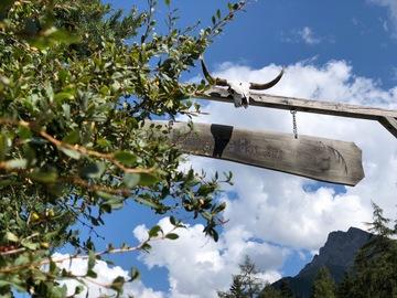 Workshop Angebot (Termine): Wanderreiten & Yoga im Val Sinestra