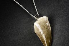 Buy Now: 50 x Sterling Silver Dinosaur Tooth necklaces