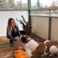 Urlaubsbetreuung: Urlaub für den Hund in Graz
