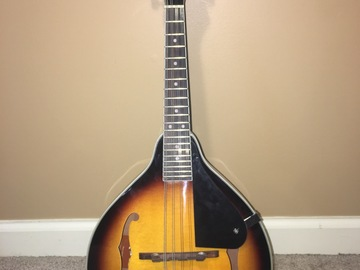 Renting out: Perfect Condition Rogue Mandolin Acoustic