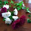 Ilmoitus: Kukkia ja köynnöstä