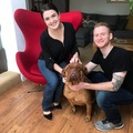 Pet Sitter: Clean, Animal Lover Couple to Spoil Your Pets & Tend to Your Home