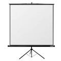 Renting out: Projection screen