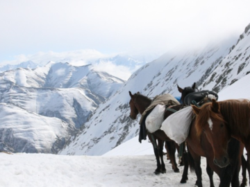 Demande de devis: Self sufficient horseback trek in Tusheti - Georgia