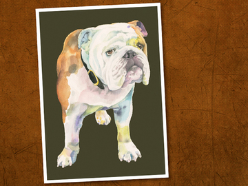 Selling: English Bulldog Print