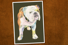 Selling: English Bulldog Print