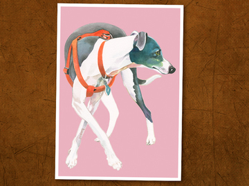 Selling: Italian Greyhound Print