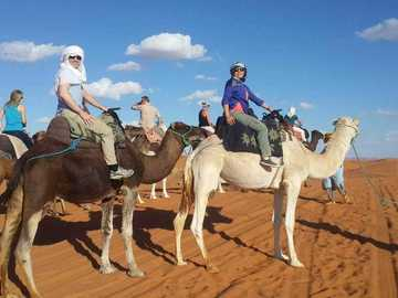 Offering with online payment: 3 Best days Marrakech Desert Tour Merzouga