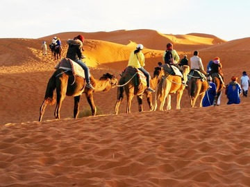 Offering with online payment: Morocco Desert Tour from Marrakech 3 days