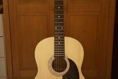 Renting out: Martin Smith W-100-N-PK Acoustic Guitar
