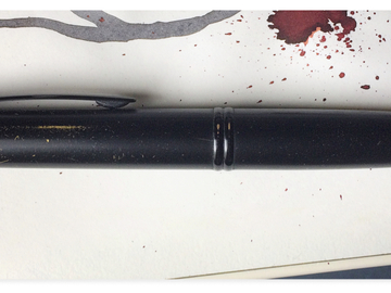 Renting out: Well loved (read worn) Pilot Vanishing Point - Matte black