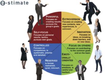 Coaching Session: Coaching de carrière/  profil de personnalité E-STIMATE